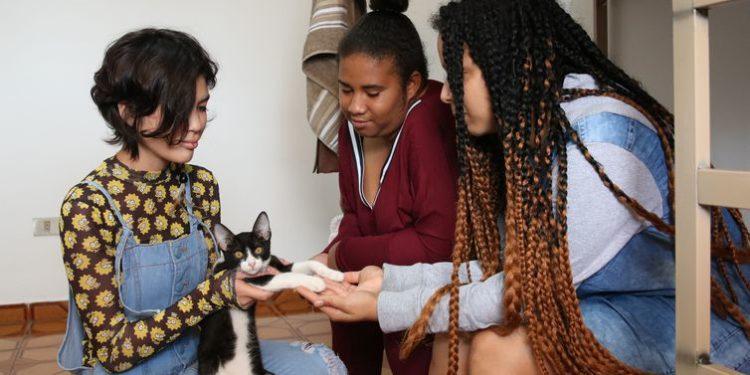 Lauana, Adriana e Jessica desenvolvem a autonomia e o gerenciamento de despesas na República Jovem Maria Maria, na Capital. Foto: Rovena Rosa/Agência Brasil