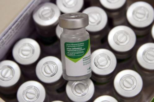 Vacinas que serão utilizadas na imunização do pessoal da Educação, em Campinas Foto: Prefeitura/Divulgação