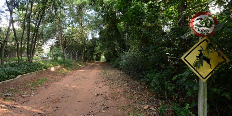 Passeio é uma oportunidade para conhecer lugares como o Laguinho da Sanã e a Trilha do Jatobá. Foto: Arquivo