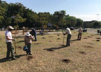 Área do plantio é preparada - Foto: Divulgação/PMC