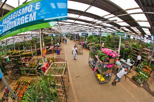 A variedade de espécies do Mercado das Flores ajuda a inovar no presente das mães. Foto: Ceasa/Divulgação