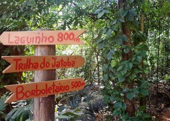 Número de visitas será restrito - Foto: Divulgação