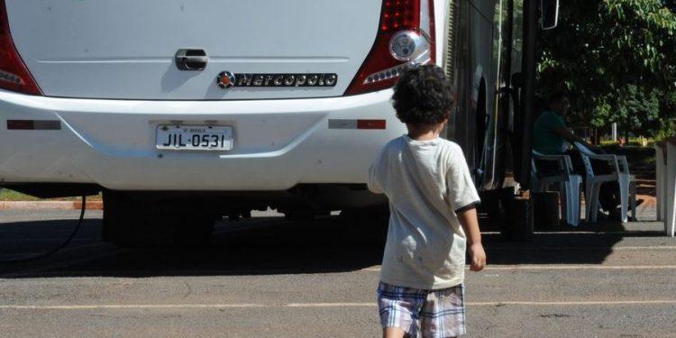 Mais um efeito nefasto da pandemia de coronavírus: no ano passado, número de adoções caiu no Brasil - Foto: Antonio Cruz Agência Brasil