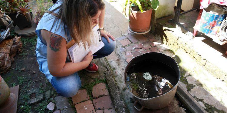 Trabalho de vistoria para a identificação de criadouros, em residência. Foto: Divulgação \ PMC