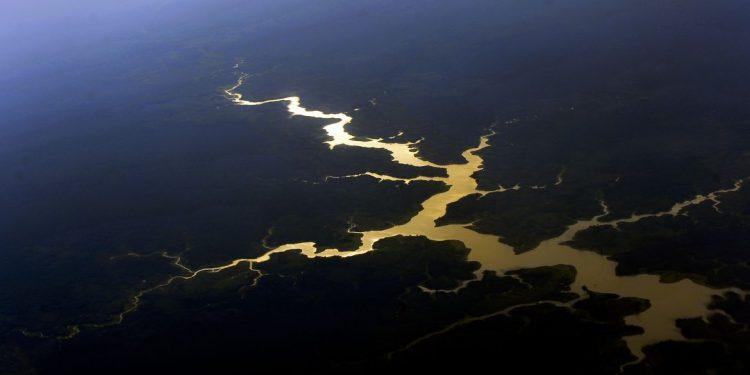 A Amazônia e as florestas de Mata Atlântica respondem por 60% do potencial de descoberta no país. Foto: Agência Brasil/Divulgação