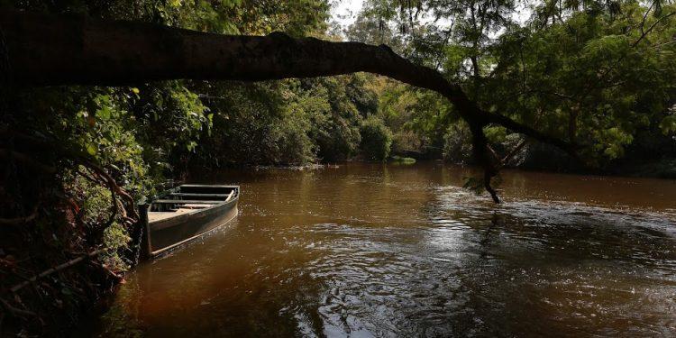 A preservação do meio ambiente estará em discussão durante toda a semana. Foto: Leandro Ferreira/AAN