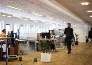 Nos primeiros cinco meses do ano há um saldo positivo de um saldo positivo de 1.803 empresas abertas. Foto: Pixabay/Divulgação