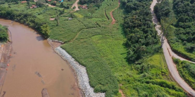 Para realizar todo o trabalho de restauração florestal, a Vale tem anunciado parcerias com grupos científicos Foto: Vale