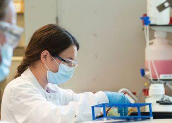 Objetivo da ONU é usar tecnologia para vacina contra a malária - Foto: Universidade de Oxford/John Cairns
