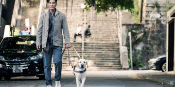 O chef Lee Bo Ting (Simon Yam) perde a visão e passa a ter ajuda de um cão-guia Fotos: Divulgação