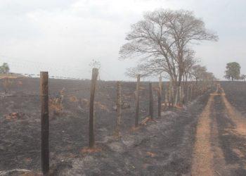 Uma das três fazendas que foram queimadas no incêndio: pasto e vegetação viraram cinzas em dois dias Foto: Leandro Ferreira/Hora Campinas