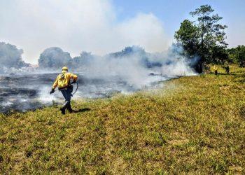 Brigadistas tentam apagar incênio em unidade de conservação, em Brasília Foto: Instituto Brasília Ambiental/Divulgação