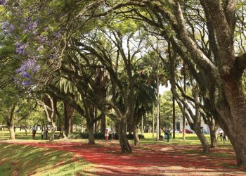 A reabertura dos parques urbanos e unidades de conservação estaduais em horário integral segue as mudanças do Plano SP. Foto: Agência Brasil