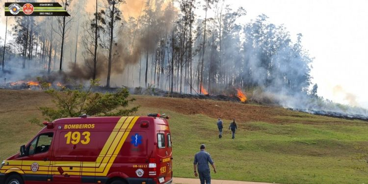 Socorristas do Corpo de Bombeiros próximos do avião em chamas, em Piracicaba Foto: Divulgação