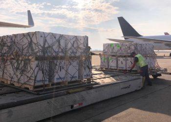 Carga é organizada por funcionários no Aeroporto Internacional de Viracopos Foto: UPS/Divulgação